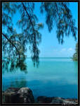 South Florida - Florida Keys 5