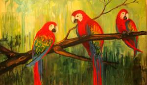 Kathy's Macaws