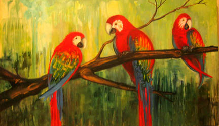 Kathy's Macaws by RustedSilver