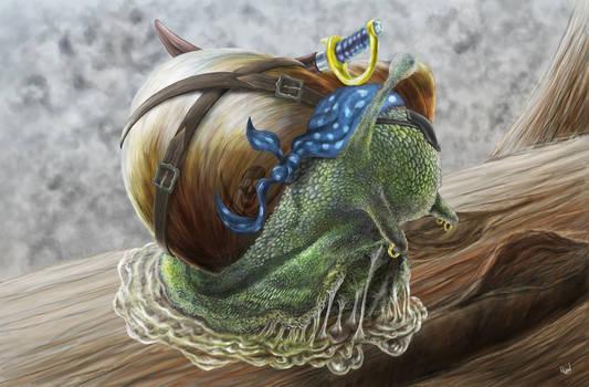 Pirate Snail