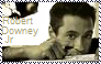 Robert Downey Jr Stamp by Raephen