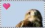 Custom Buzzard Stamp by Raephen