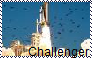 Challenger Disaster Stamp by Raephen