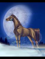 Winter Wonderland by freedomheart