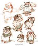 owls doodles