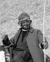 Abu Gamel by addobos