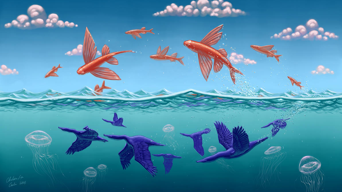Flying fish by cacodaemonia on deviantart for Flying fish company