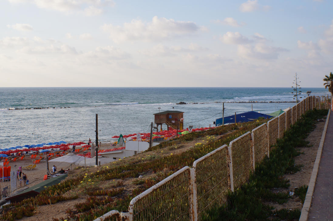 bat yam chat Like its neighbor to the north, bat yam also has plenty of beaches  in the center  are nice, but the highlight of bat yam is the southern tayo beach  babikir ali  adham-abdou tried to chat up girls in petah tikva, but as he left.