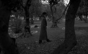 THE INVISIBLE MAN - Image 7 by Lanky-Lefty