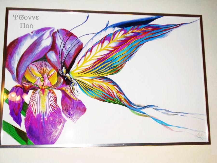 Iris Butterfly by Petirrojoazul