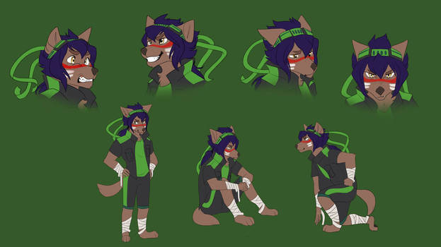 Wolf Kota expressions and poses