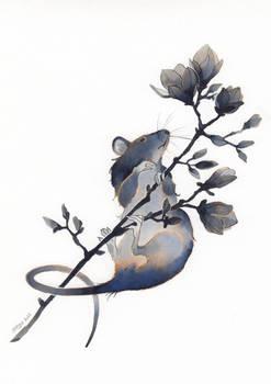 Rat on magnolia