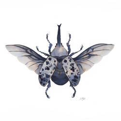 Hercule beetle