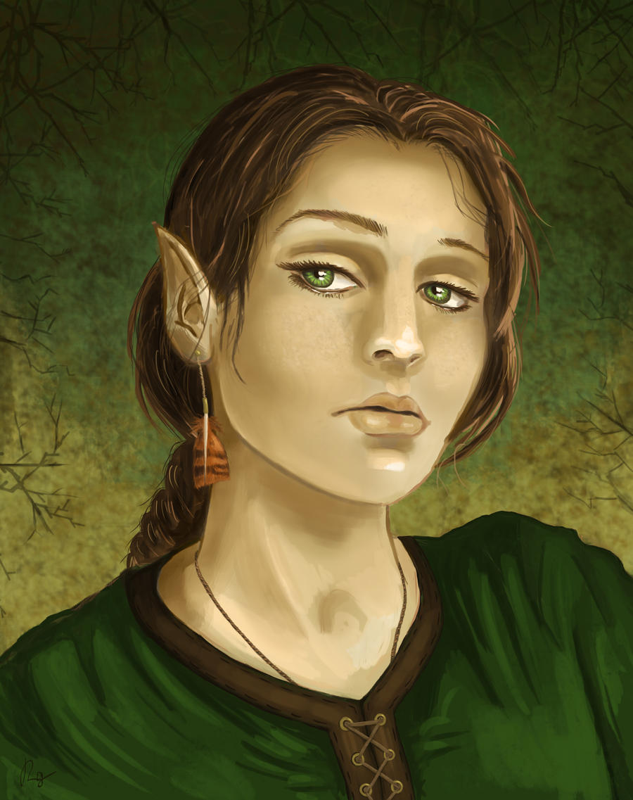 Elf Druid of the Hawk by Scarecrowlover