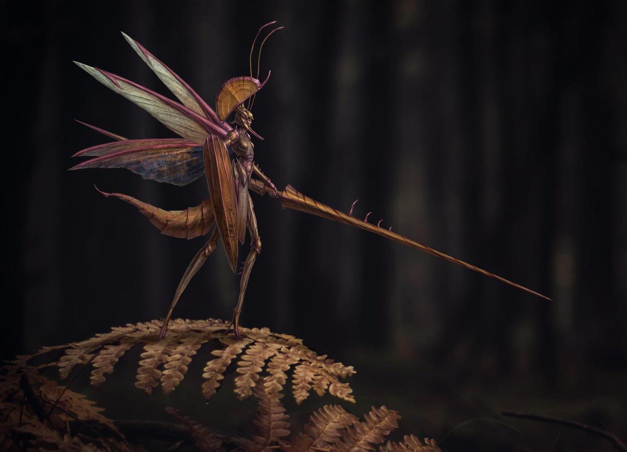 Mantis Amazon