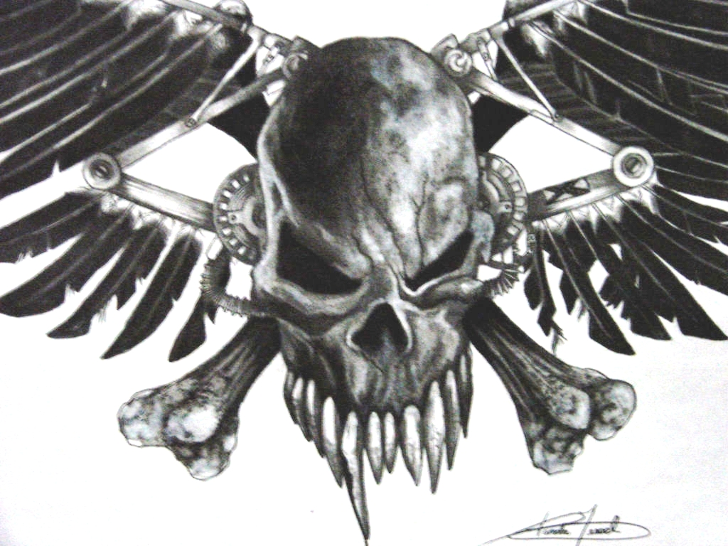 skull crossbone...