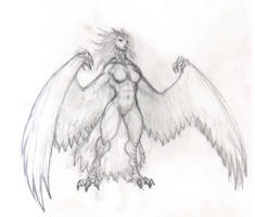 Harpy scetch