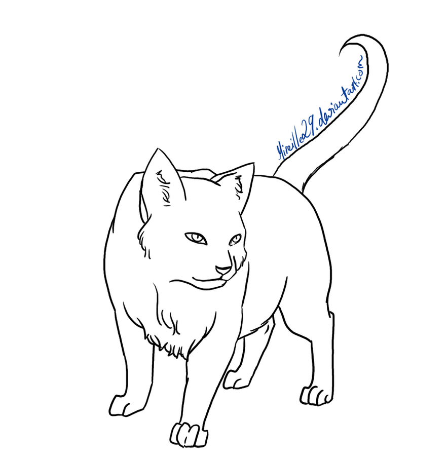 Cat Lineart : Cat lineart by aira on deviantart