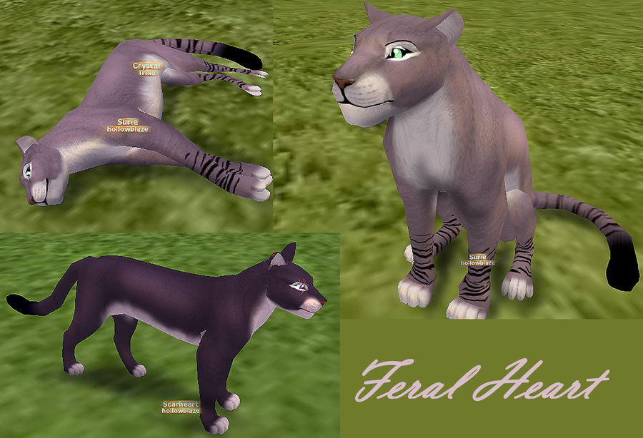 how to add modded maps to feral heart