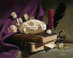 Raccoon skull still life by Mike-Sass
