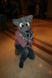 Me, Taken on Confuzzled 2014 by DarksilenceTheWolf