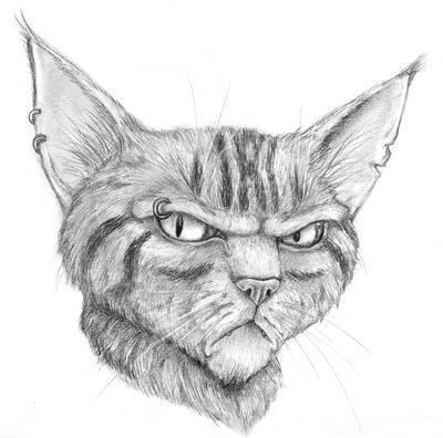 Grumpy guy by Loony-Madness