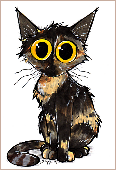 Bo the tortie cat by Morrison3000