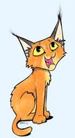 Caracal kitty