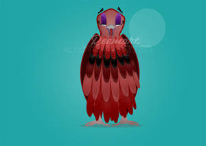 Falcon  Illustration
