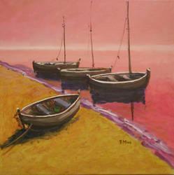Barques by rMora