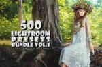 500 Professional Lightroom Presets Bundle V.1
