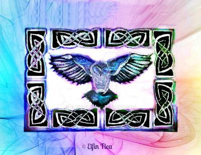 Owl by Elfin-Flea