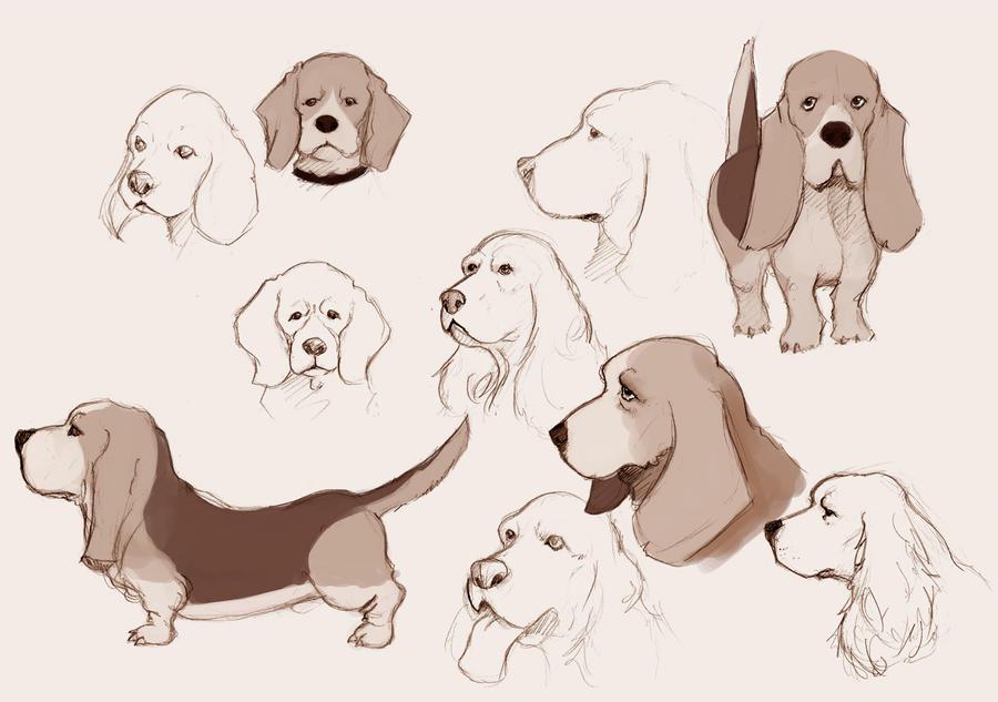 dogs_001_by_ocarian-d3gigyx.jpg