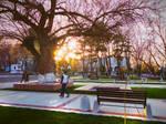 Sunset in Tashkent by ideaday