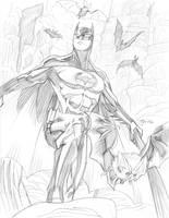 03072014 Batman by guinnessyde