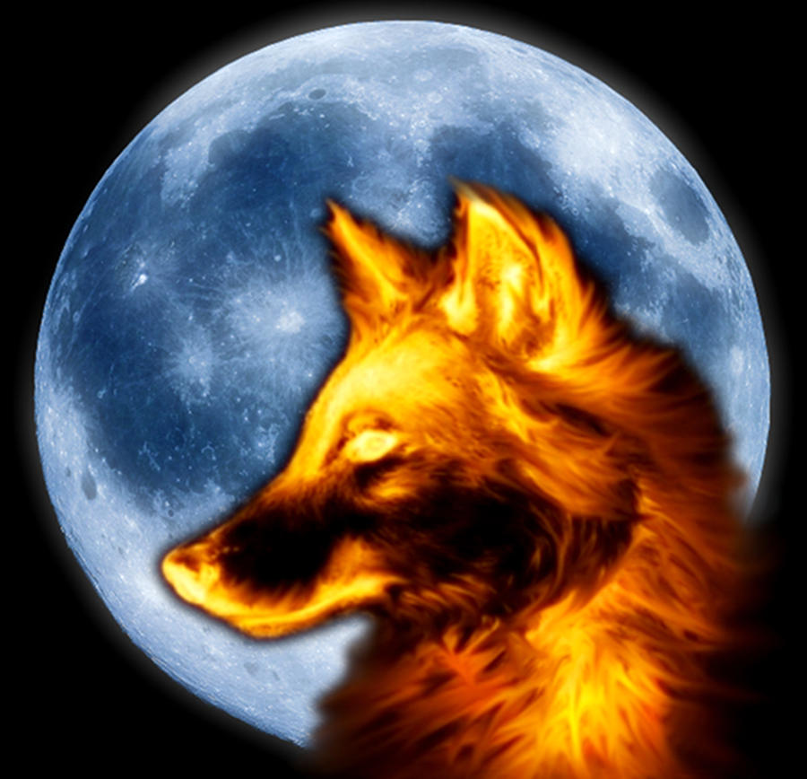 fire wolf with blue moon by ollylove on deviantart