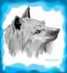 Wolfs-hound