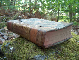 Book in Woods 3 by DaemStock