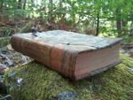 Book in Woods 3