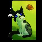 YCH kitten - Wolfsrain