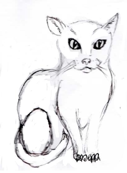 Dessins et Photos [Amy] A_cat_by_amandiera-d32cky4
