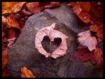 Heart by Chibi-Shuriken