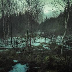 Reykholt Forest, Iceland. Matte Painting by mcrassusart