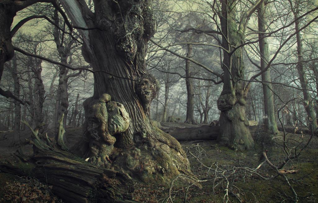 The Darkest Part of the Woods by mcrassusart