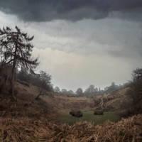 Knole Park in April, Digital Painting