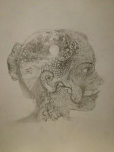 nautilus-belauensis's Profile Picture