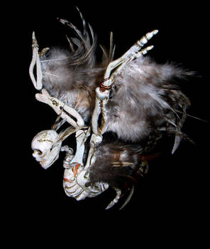 Skeletal 01