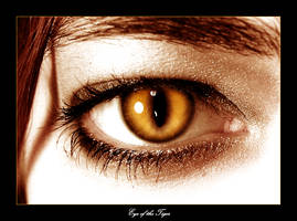 Eye of the tiger 1 by ionyka