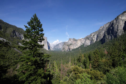 Yosemite02