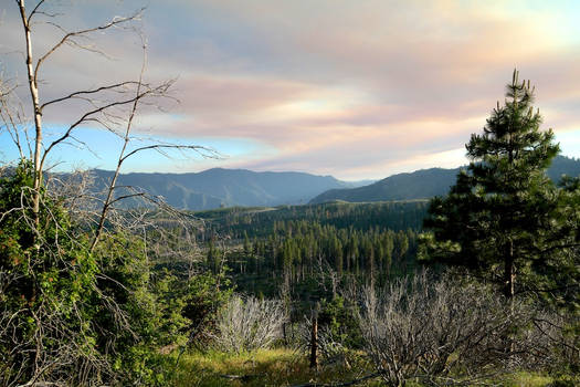 Yosemite30